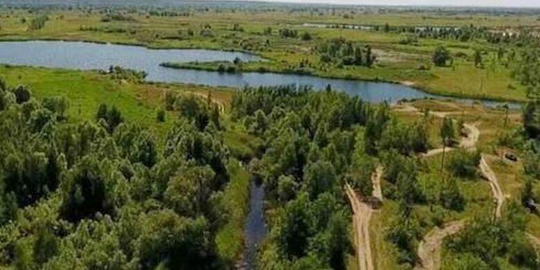 Ще сім зелених зон у Києві оголосили ландшафтними заказниками
