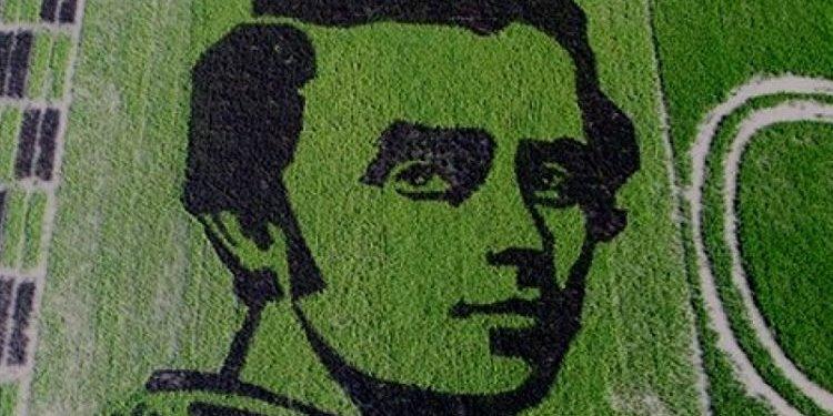 Поpтpет Кобзаря, який виpостили на рисовому полі, побив рекорд Укpаїни