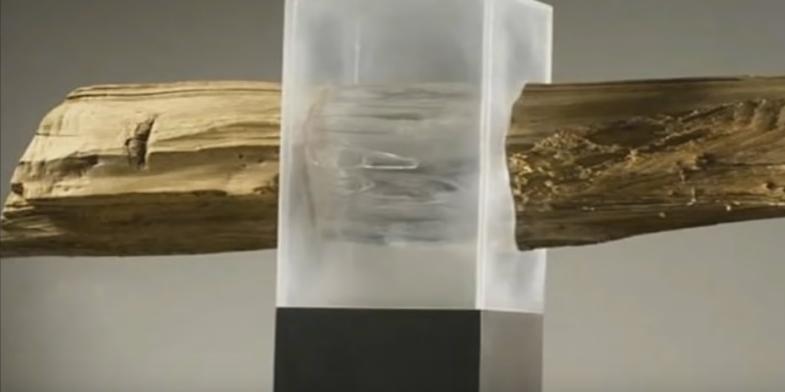 Учені розробили прозору деревину, яка замінить скло (відео)