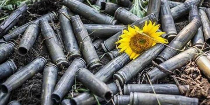На Донбасі після початку перемир'я поранили цивільного, який з матір'ю працював на городі — ОБСЄ