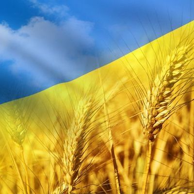 """МЗС запрошує патріотів долучитись до нового проекту """"Розкажи світові про Україну"""""""