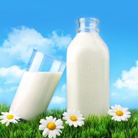 Вчені назвали країни, де п'ють найбільше молока