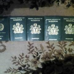 У Києві працювала підпільна друкарня, де виготовляли фальшиві документи для нелегальних мігрантів (відео)