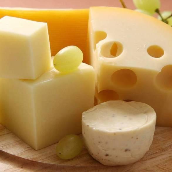У Данії призначений Росії сир роздадуть бездомним