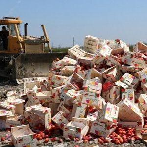 Війна з їжею триває: у Криму знищили 4 тонни нектаринів з Литви