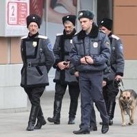 У Санкт-Петербурзі козаки шукатимуть у магазинах санкційні продукти