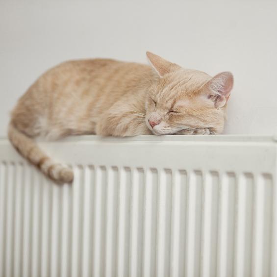 """Українців чекає """"холодний"""" опалювальний сезон через нестачу газу"""