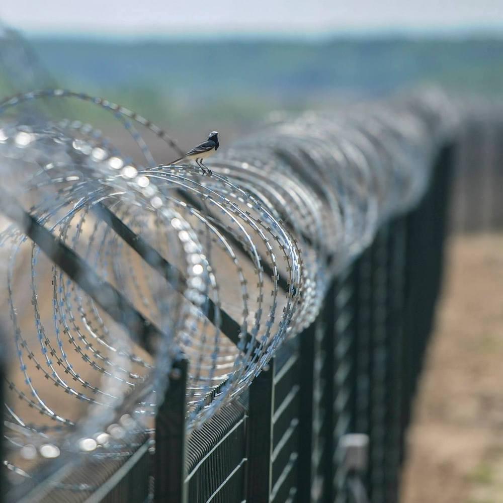 В ООН засудили будівництво паркану на кордоні Угорщини з Сербією