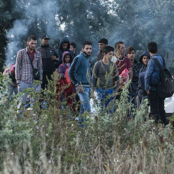 Україна збирається допомогти Європі з мігрантами