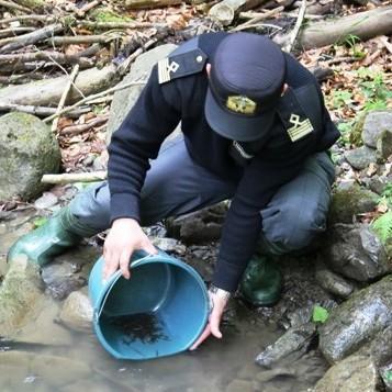 В Україні буде ще один патруль - рибний