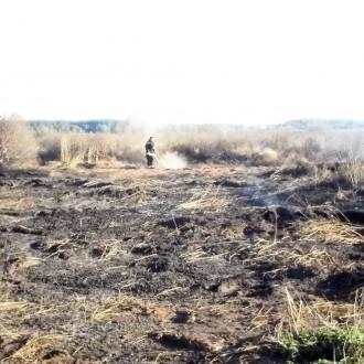 Під Києвом все ще палає 10 гектарів торфовищ