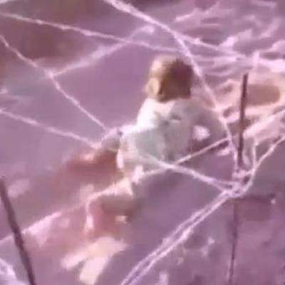 У мережі з'явилося шокуюче відео тренування 6-річного джихадиста (ВІДЕО)