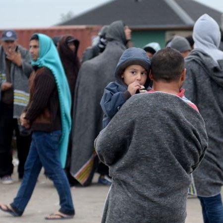Війна за виживання: мігранти вбивають один одного