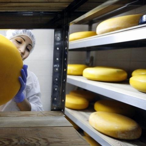 У Росію поставлятимуть сири з Ірану