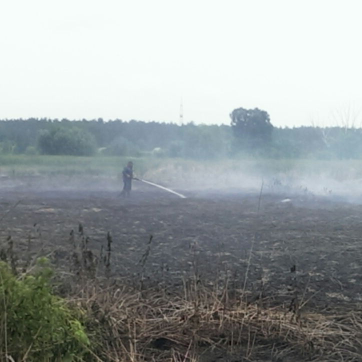 На Київщині досі тліє 119 га торфу