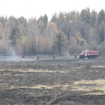 На Київщині попри дощі продовжують тліти 107 га торфу