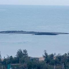 В Азовському морі з'явився новий острів (ВІДЕО)
