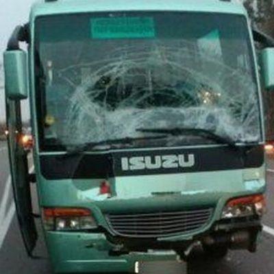 9 школярів постраждали в ДТП на трасі Київ-Чоп