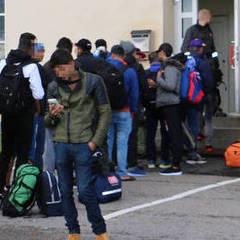У Фінляндії біженців-мусульман поселили у центрі свинарства