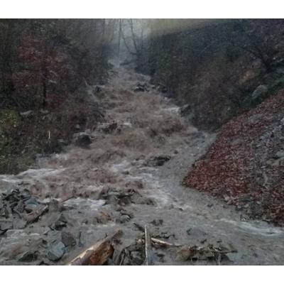 На Закарпатті повінь: підтоплені близько 40 домогосподарств (фото)
