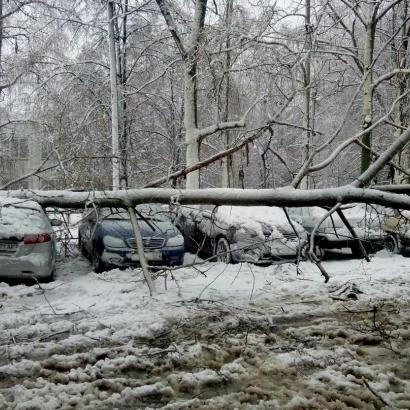 Наслідки стихії на Харківщині: загинула жінка