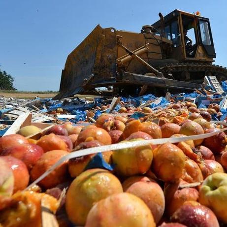 У Росії знищили 200 тонн санкційних фруктів та овочів