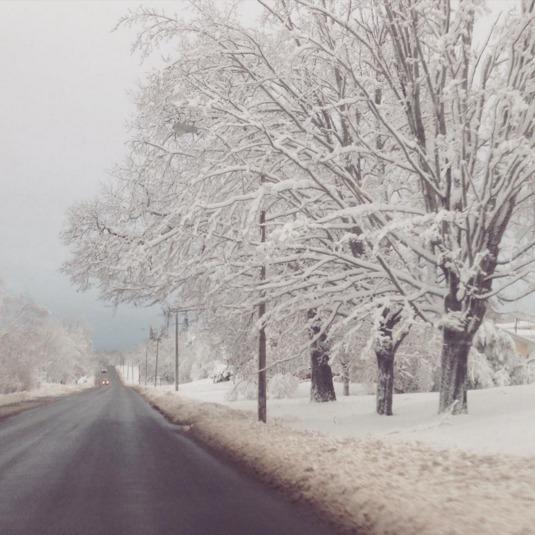 Канаду накрив снігопад: закриті школи і скасовані авіарейси
