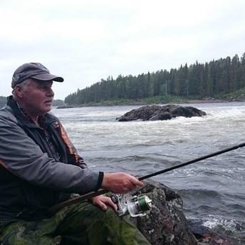 У Швеції різдвяні ялинки стануть житлом для риб