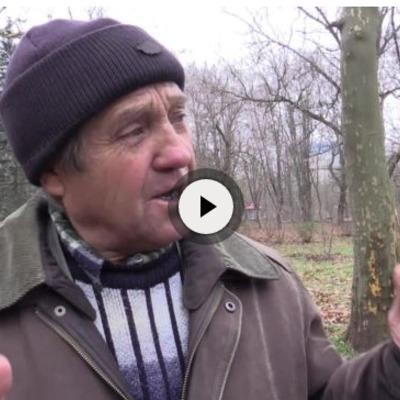 Що кажуть мешканці Сімферополя про роботу окупаційного уряду (ВІДЕО)