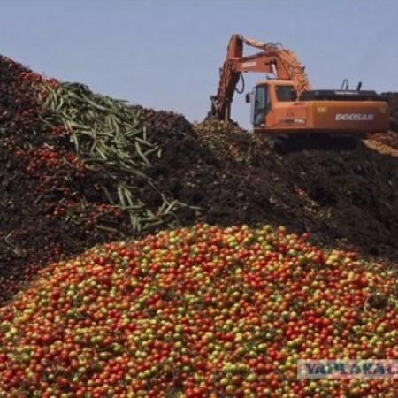 Підбиваючи підсумки: У Росії похвалилися знищенням за півроку 2 тисяч тонн продуктів