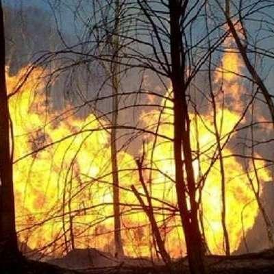 На Закарпатті стався страшний вибух на газопроводі (ВІДЕО)