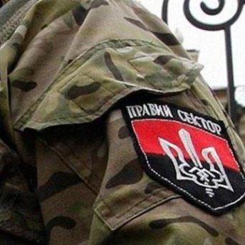 """""""Правий сектор"""" заперечив свою причетність до стрілянини в Карпатах"""