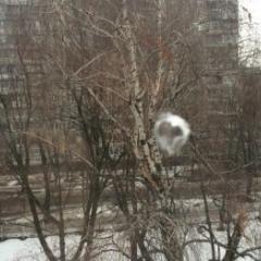 У Харкові невідомі обстріляли школу