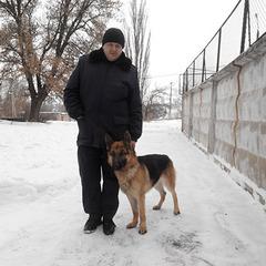 У Кривому Розі службовий собака привів правоохоронців до квартири грабіжника