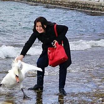 Болгарська туристка мучила лебедя заради фотосесії