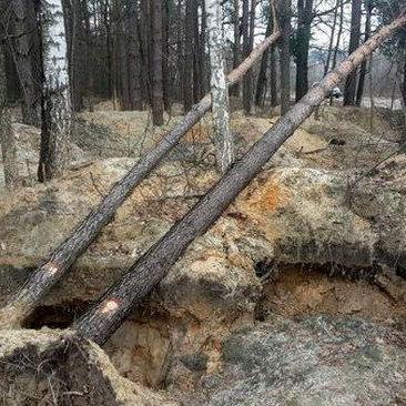 Наслідки видобутку бурштину на Рівненщині вражають