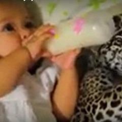 Немовля і ягуар п'ють молоко з пляшечок (відео)