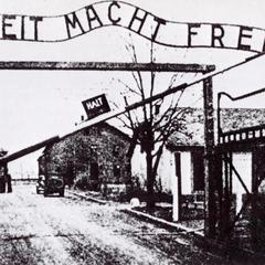 На кістках нацистського лікаря, який ставив досліди над в'язнями Освенціма, вчитимуть лікарів