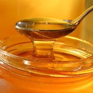 Україна може стати світовим лідером з експорту меду, - словацький експортер