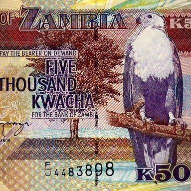 Замбійську валюту визнали кращою у цьому році