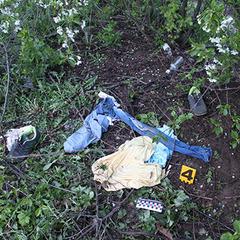 Маніяк, звільнений за «законом Савченко», убив двох жінок за одну ніч