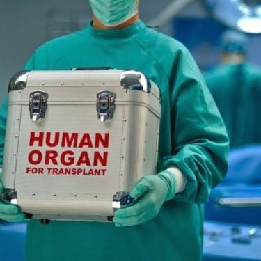 До законопроекту про трансплантацію органів вносять важливі зміни