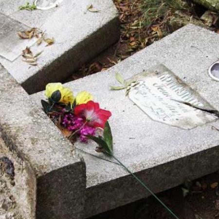 На Дніпропетровщині вандали зруйнували кладовище (ВІДЕО)