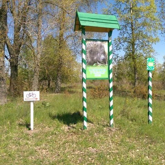 У столичному парку Дружби народів створено сімейний веломаршрут (фото)