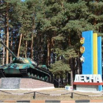 П'яний військовий вилетів у кювет під полігоном «Десна», є загиблі