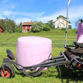 Влітку поля Фінляндії прикрасять рожеві тюки сіна