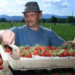Польща зрівняє зарплати місцевих та іноземних працівників