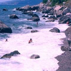 Екологи шукають нові забруднювачі Чорного моря