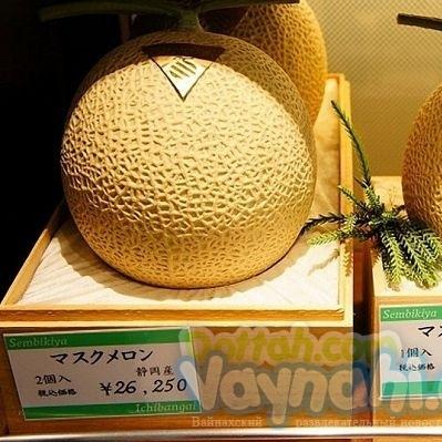 У Японії пару динь продали за 27 000 доларів
