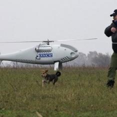 Бойовики збили безпілотник ОБСЄ